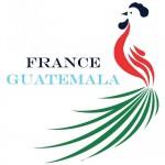 Logo non officiel